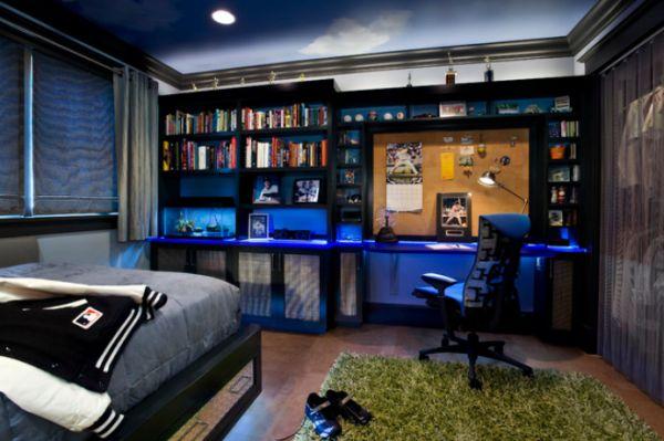 Boy Teenage Bedroom Ideas