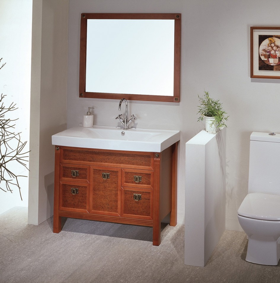 Bathroom Vanity Cabinets Only