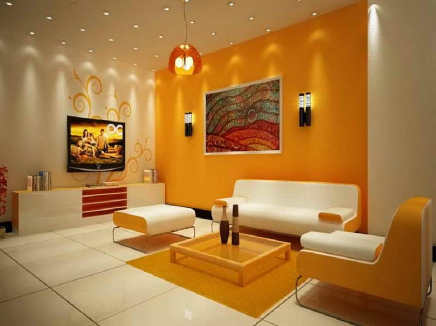 Living Room Color Combinations for Walls
