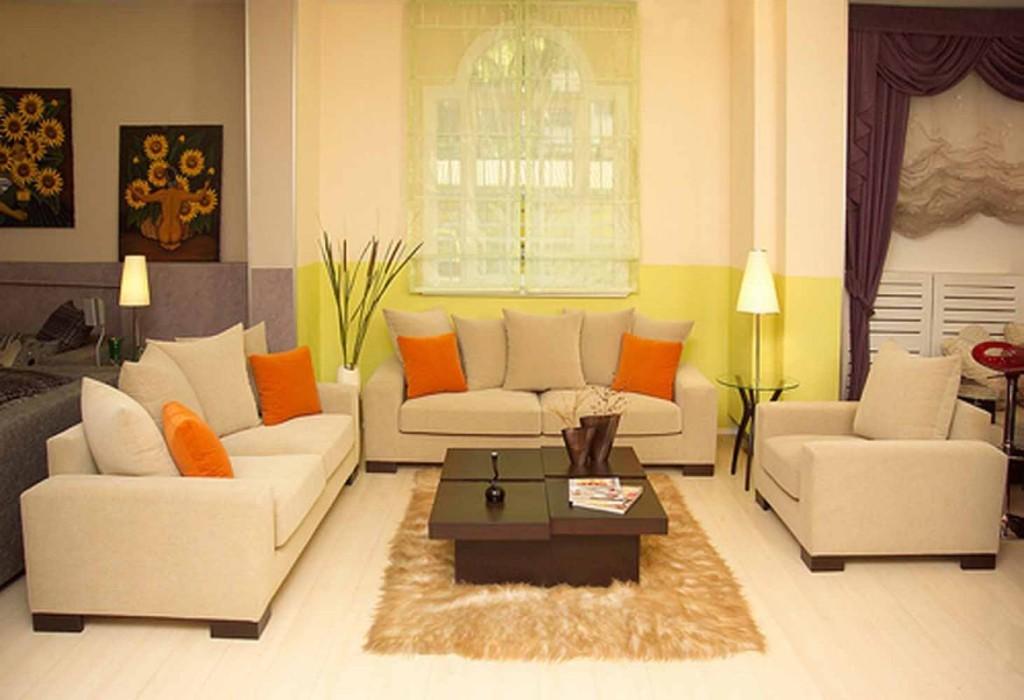 Living Room Design Ideas on a Budget