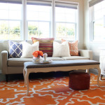 Accent Rugs for Living Room