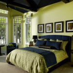 Black and Green Bedroom Ideas