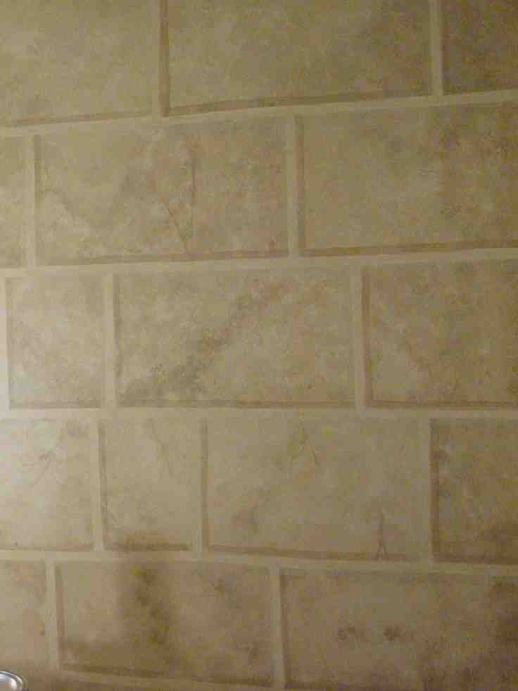 Faux Stone Wall Painting