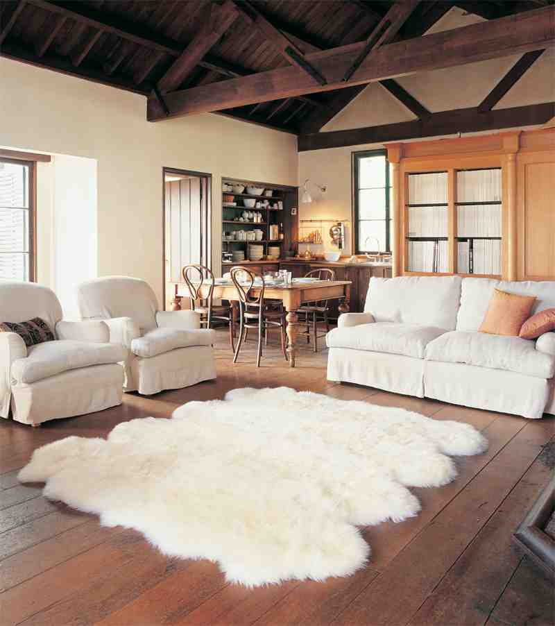 Floor Rugs for Living Room