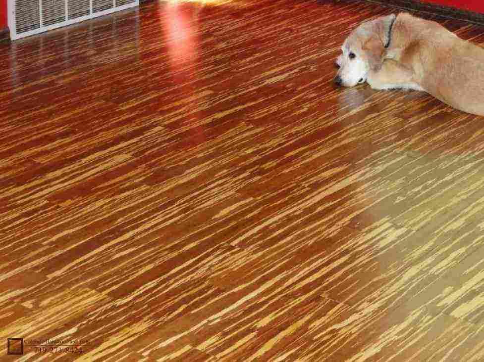 Home Depot Bamboo Flooring