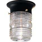 Outdoor Ceiling Mount Light Fixtures