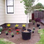 Front Yard Landscaping Ideas For Small Homes