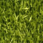 Lime Green Shag Area Rug
