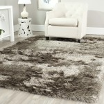 Shag Area Rugs Clearance