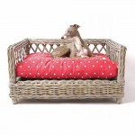 Crib Mattress Dog Bed