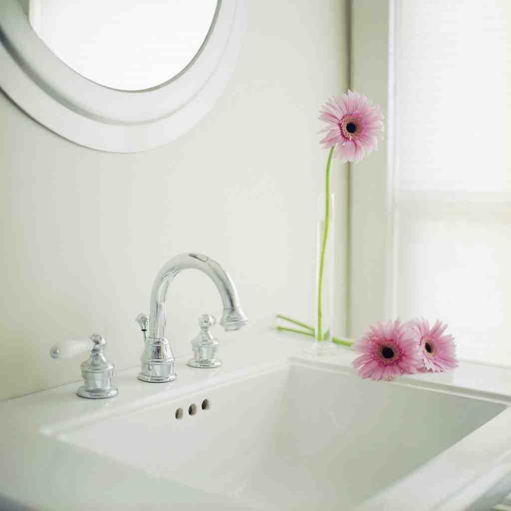 Flowers at Bathroom Sink