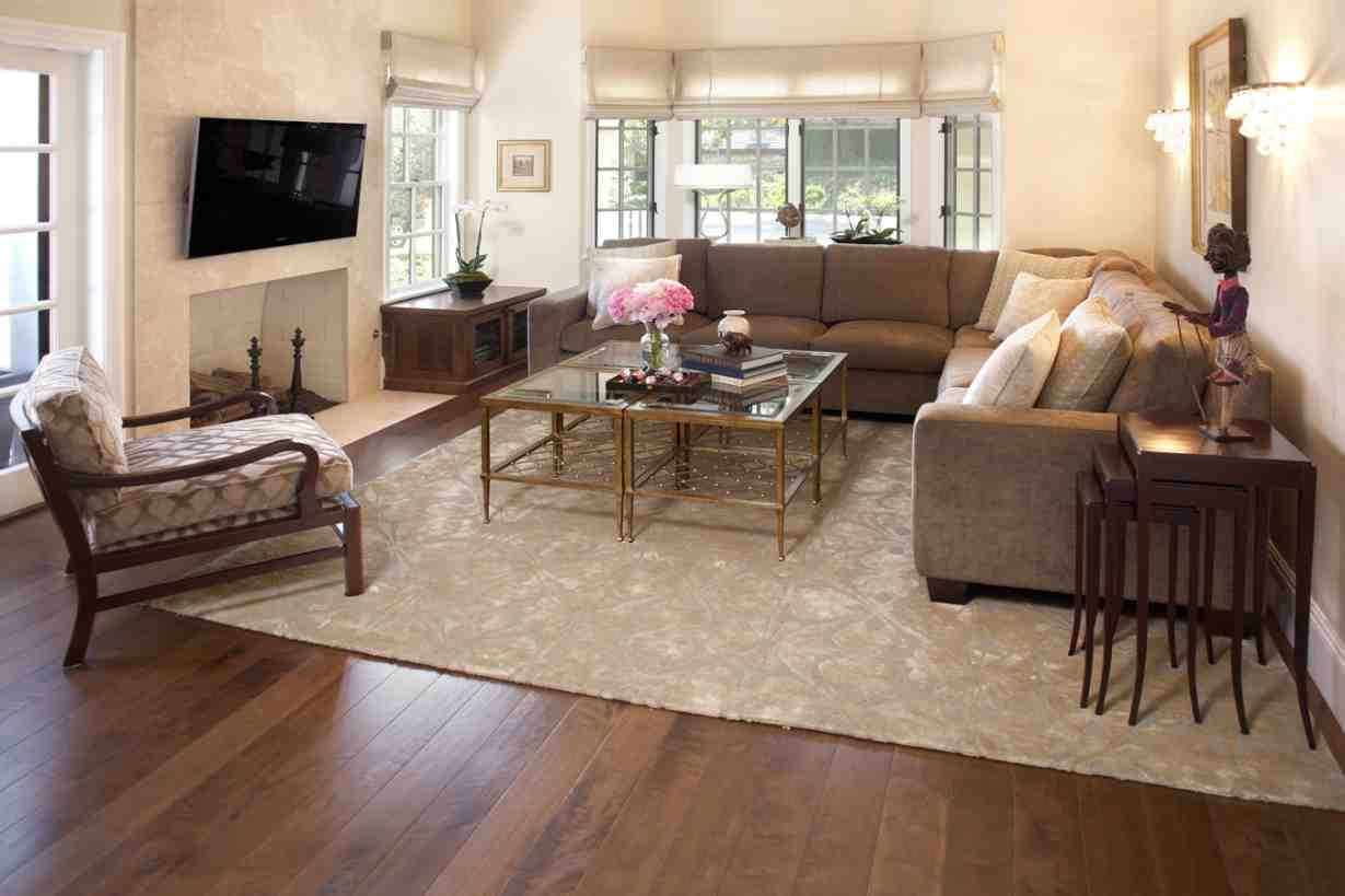 Living Room Throw Rugs Decor Ideas