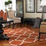 Modern Area Rugs for Living Room