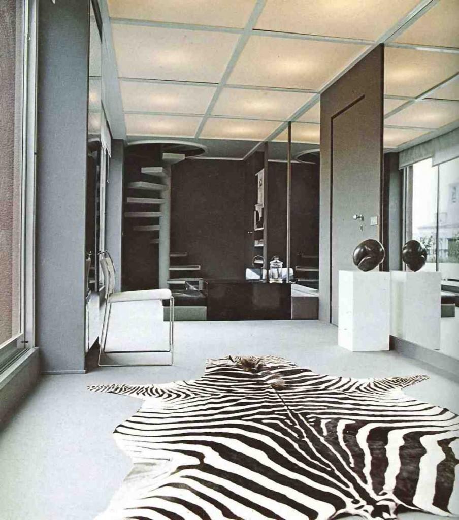 Zebra Rug Living Room