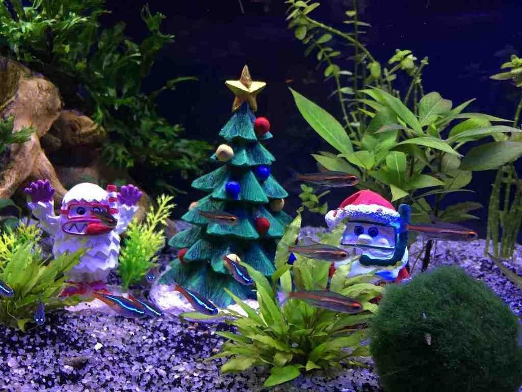 Aquarium Christmas Decorations