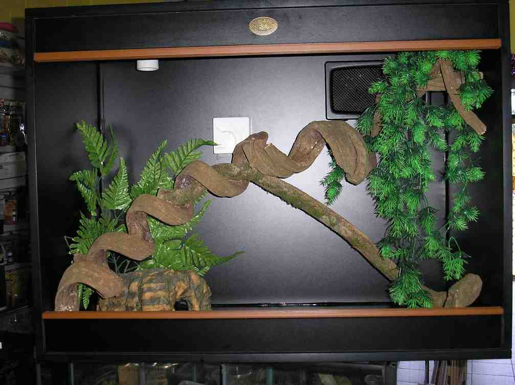 Best Aquarium Decorations Decor Ideas