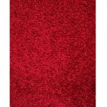 Bright Red Area Rug