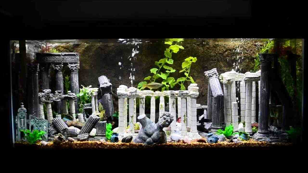 Roman Aquarium Decorations Decor Ideas