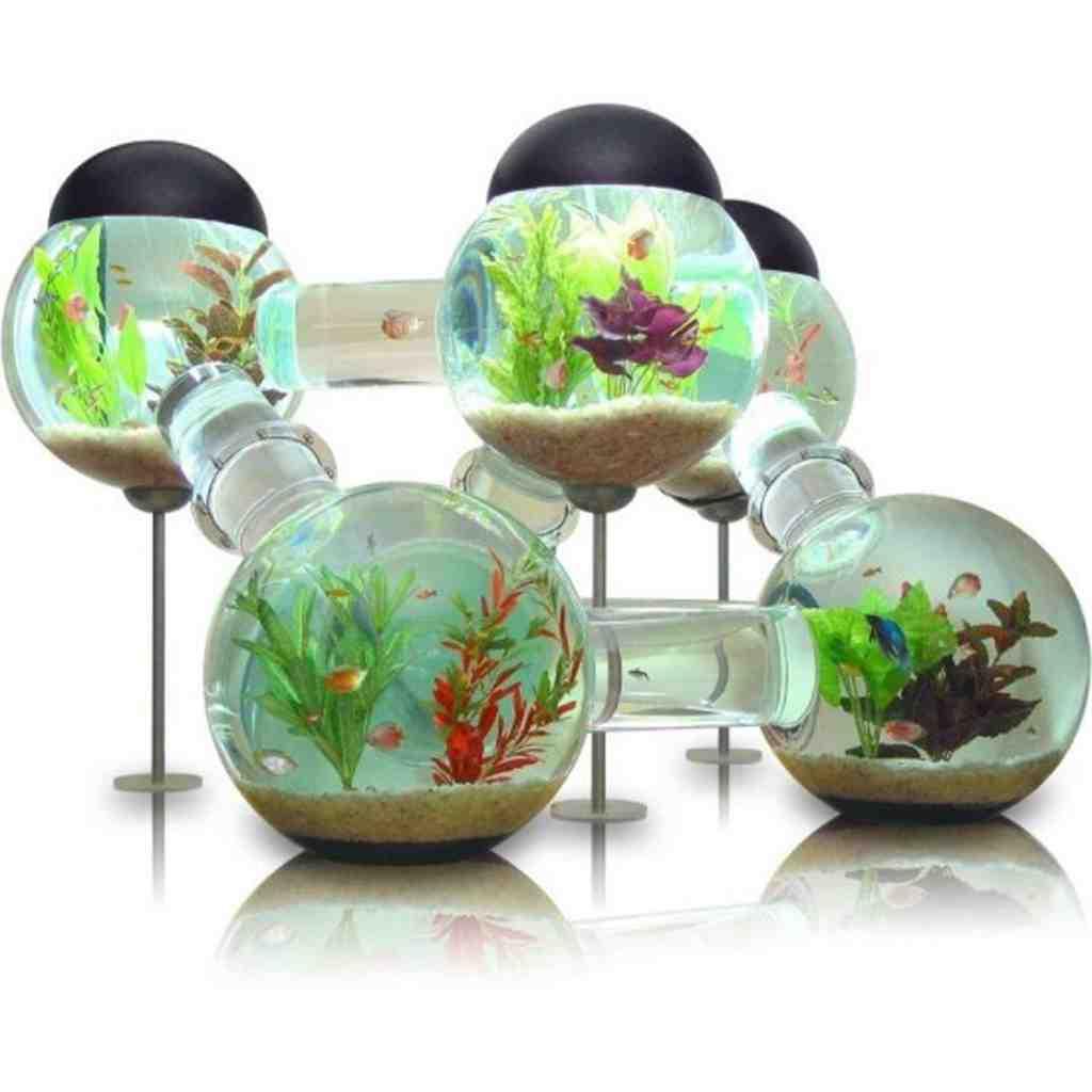 Small Aquarium Decorations