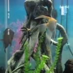 Top Fin Aquarium Decorations