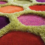 Shaped Area Rugs