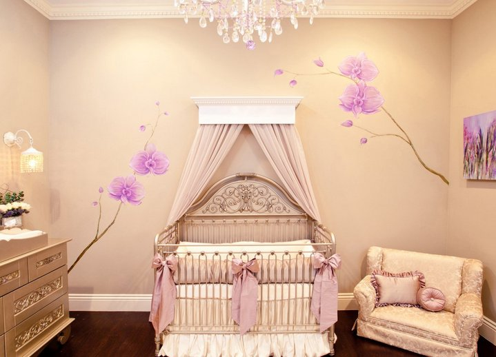 Baby Girl Room Decor Pictures