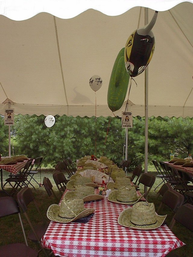 Country Western Party Decorations