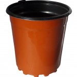 6 Nursery Pots