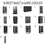 13 Best Built In Wine Cooler