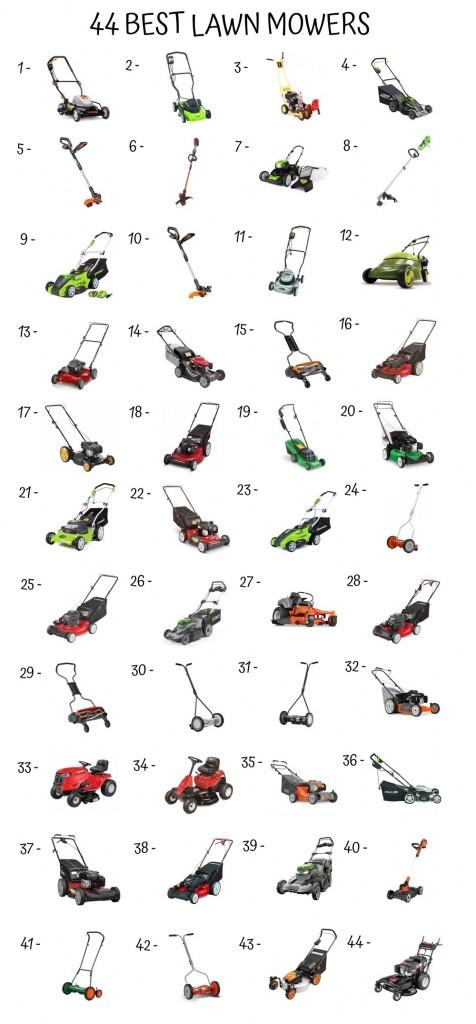 44 Best Lawn Mower