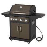 Natural Gas Barbecue Grills