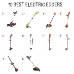 10 Best Electric Edger