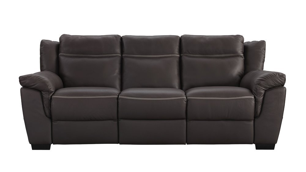 Natuzzi Leather Couch