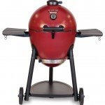 Egg Grill Smoker