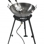 Gas Grill With Deep Fryer