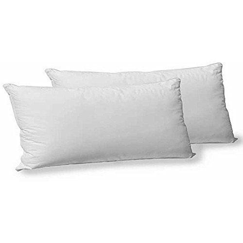Casa Copenhagen Wispy 2 Pack, 16 X 24 Inches, Pillow Insert