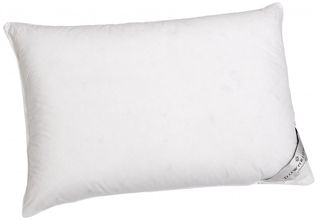 Downright 360 Thread Count 16 Oz Logana Down Pillow