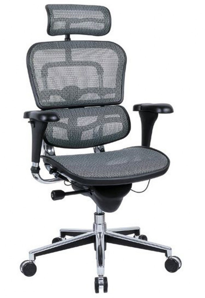 Ergohuman High Back Executive Chair With Headrest