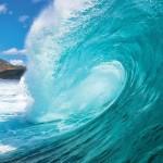 JP London MD4A114 Hang Ten Ocean Surf Removable Full Wall Mural