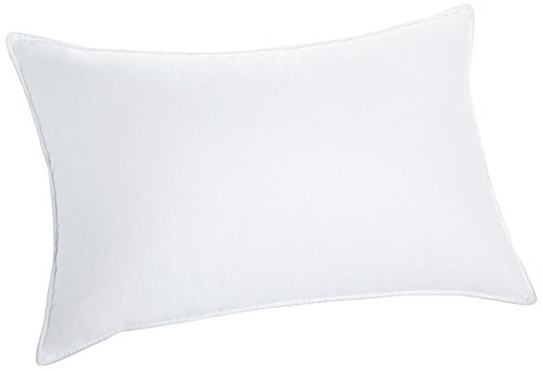Northwood Down 800 Fill Power European White Goose Down 366 Thread Count Pillow